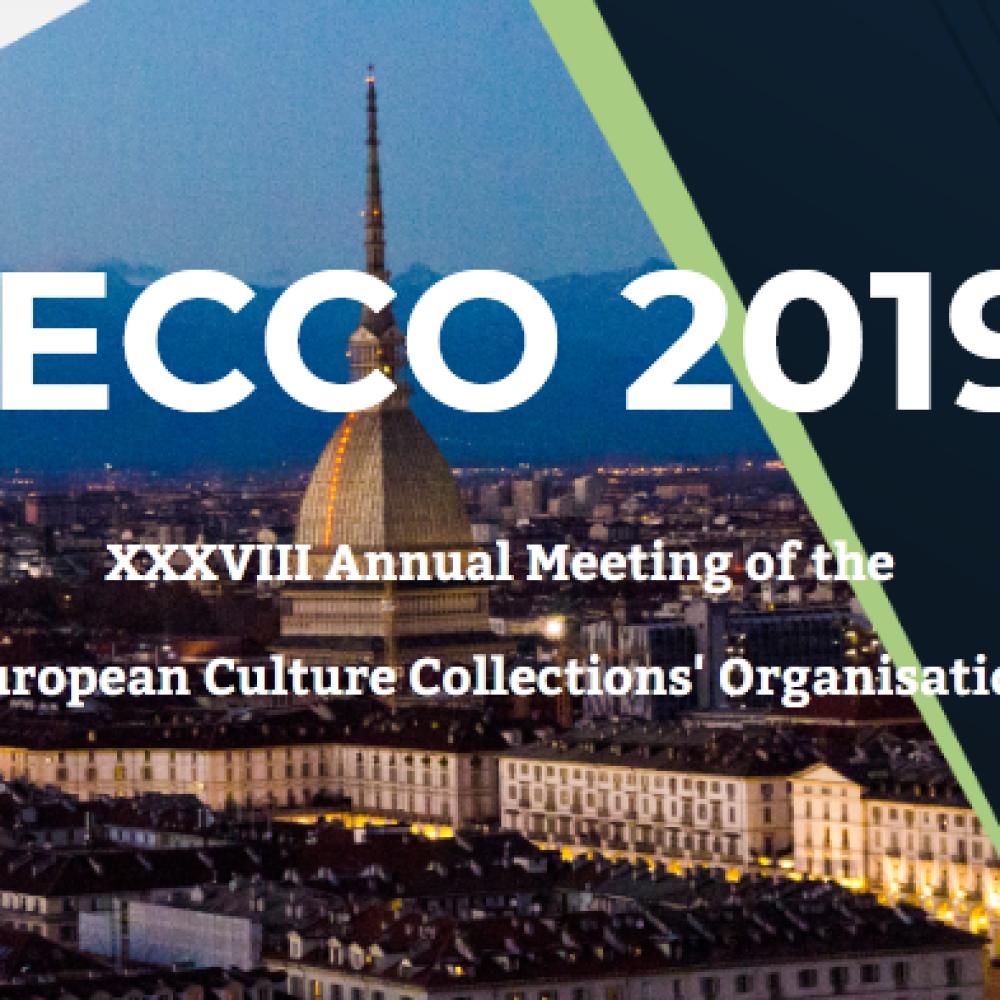 ECCO XXXVIII. Torino, Italy